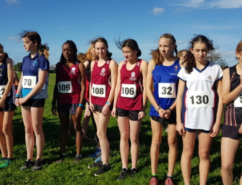 Central Zone Cross Country Results